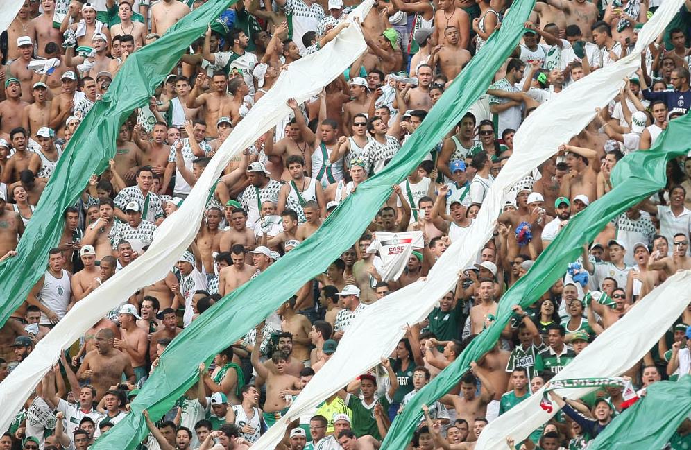 Palmeiras x Botafogo deve contar com bom público no Pacaembu