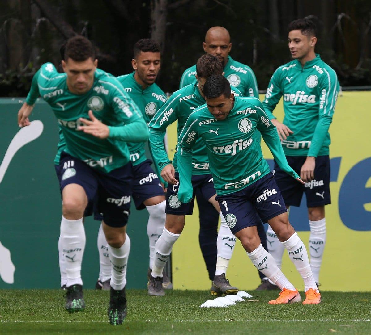 Not U00edcias Do Palmeiras Veja O Que Rolou Nesta Quinta Feira