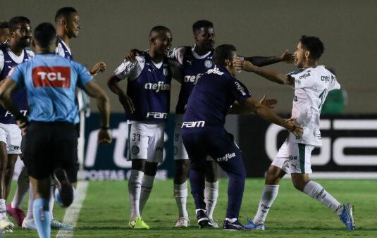 Verdão se prepara visando jogo com Avaí. Veja as principais notícias do Palmeiras desta quinta (24).