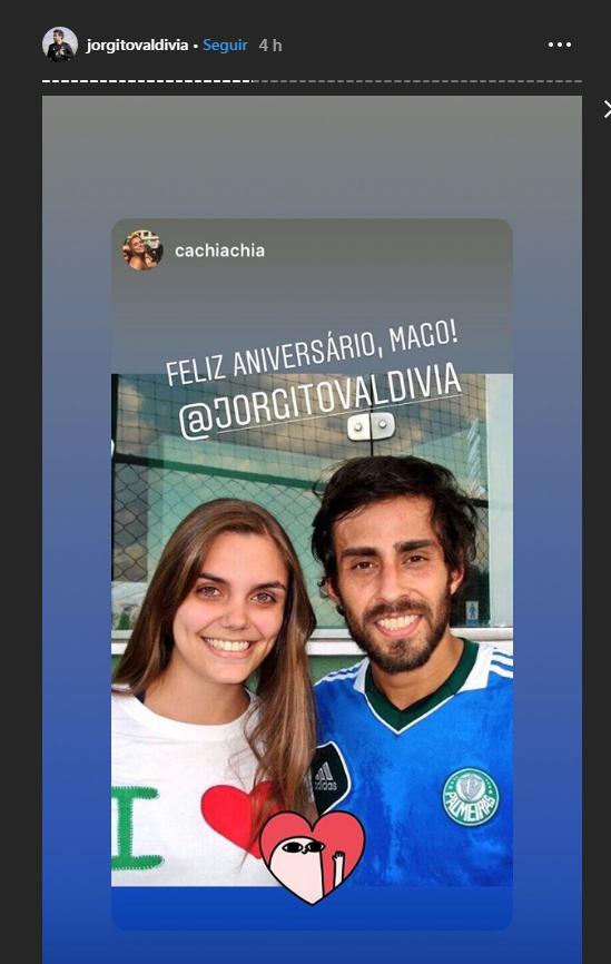 Palmeiras Valdivia