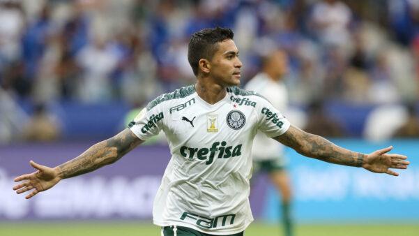 Dudu, Palmeiras, Seleção