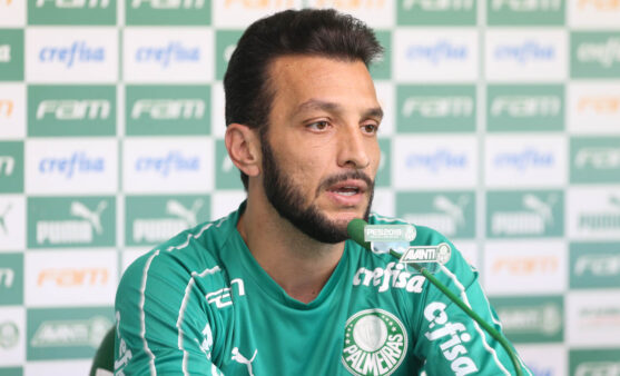 Edu Dracena no Palmeiras