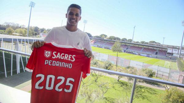 Pedrinho Benfica