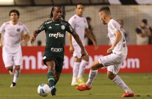 Jogadores campeões por Palmeiras e Santos