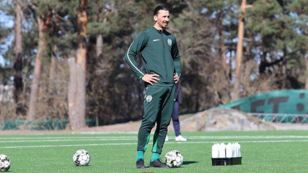 Ibrahimovic pode retornar à Suécia