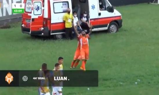 Palmeiras Luan