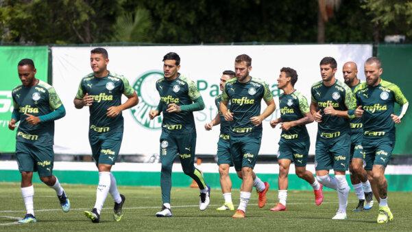 Palmeiras contratos