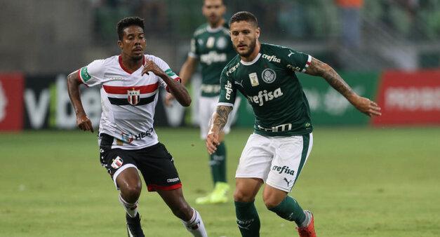 Palmeiras encara o Botafogo-SP.