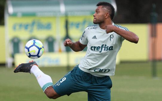 Borja, Palmeiras