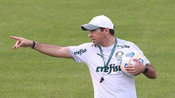 Abel pode contar com reforços no Palmeiras.