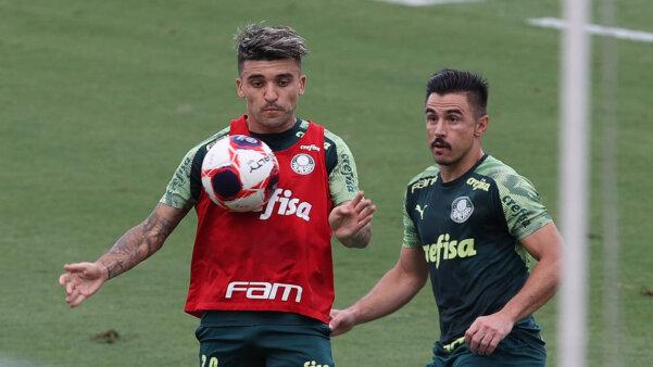 Palmeiras, Victor Luis