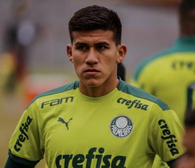 zagueiro Palmeiras