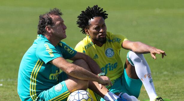 Zé Roberto em Palmeiras x Atlético-MG